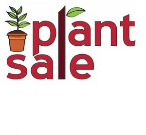 Plant Sale @ Sandhurst Village Hall