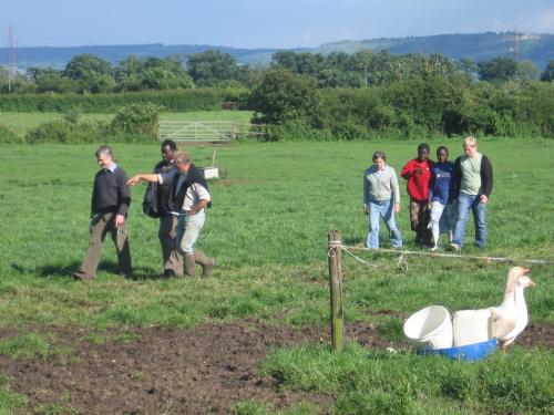 Swapping tips with our link Kenyan farmers
